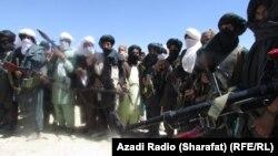 شماری از اعضای گروه طالبان