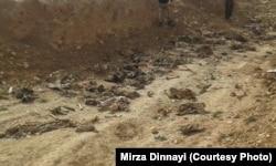 Одно из мест массового убийства езидов. Северный Ирак, февраль 2015 года