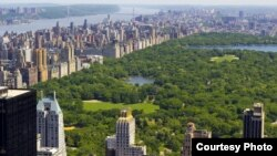Нью-Йоркдаги Central Park.