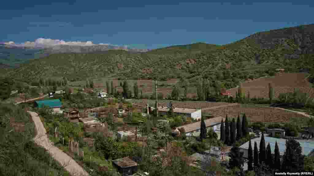 Северная околица села вдоль реки занята виноградниками здешнего филиала объединения «Массандра»