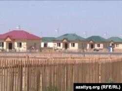 Кызылагаш возрождённый. 6 августа 2010 года.
