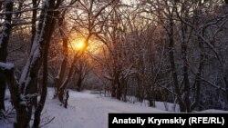 Кизил-Коба, Крым