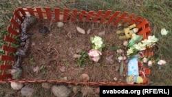 Нелегальныя могілкі хатніх жывёлаў на паўднёвым усходзе Менску