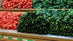 Türkmenistan şu ýyl 15 müň tonna pomidoryň we hyýaryň eksport edilendigini aýdýar