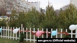 Ялинковий ринок у Севастополі