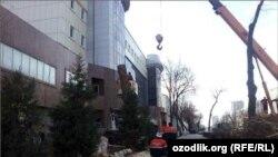 Вырубка многолетних чинар в центре Ташкента. 26 января 2016 года.