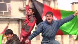 Afghans Celebrate First Victory In Cricket World Cup