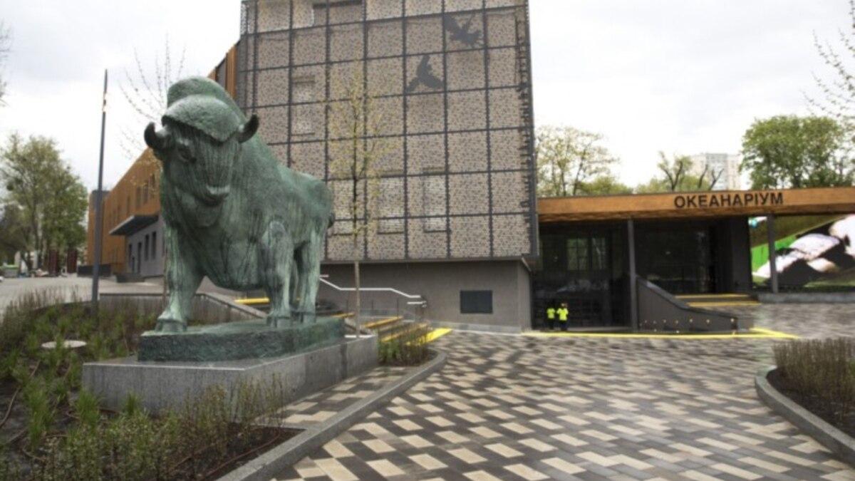 Скульптуры зубра и львов со старого входа в киевский зоопарк переделали – мэрия