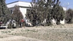 زعفران زنده گی ده ها زن افغان را عوض کرده است