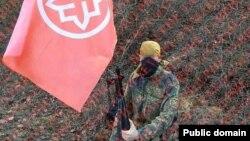 Неонацисты в Керчи