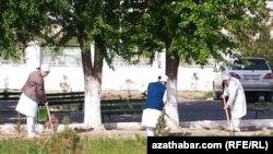 Türkmenistan, saglyk işgärleri köçe süpürýär.
