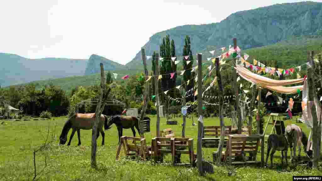 На лузі, що на північній околиці села, де зараз пасуться коні та ослики, щосуботи проводиться традиційний Бельбецький ярмарок. На ньому свою продукцію пропонують фермери Бельбецької долини