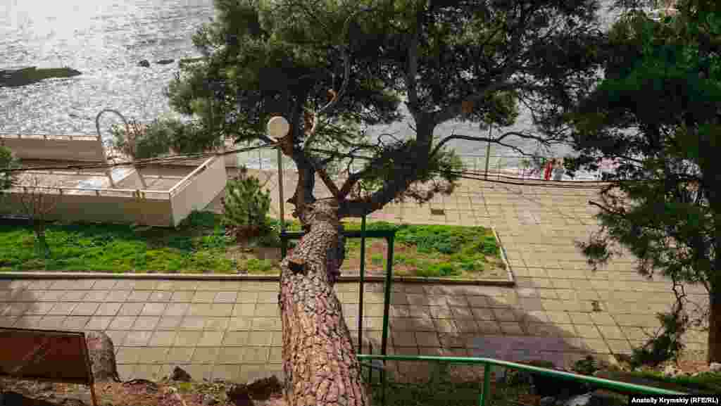 Парк спускается к пляжной зоне поселка