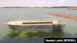 Voda u Palićkom jezeru loša i zagađena, odnosno da se zbog hemijskog zagađenja voda ne može svrstati ni u petu klasu