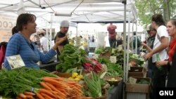 Овощи в Америке теперь выращивают не только фермеры. И не только на продажу - многие горожане стали создавать небольшие огороды для того, чтобы не зависеть от высоких цен на бензин и продовольствие