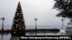 Декабрьская Ялта: дождь, прогулки под зонтом и елки (фотогалерея)