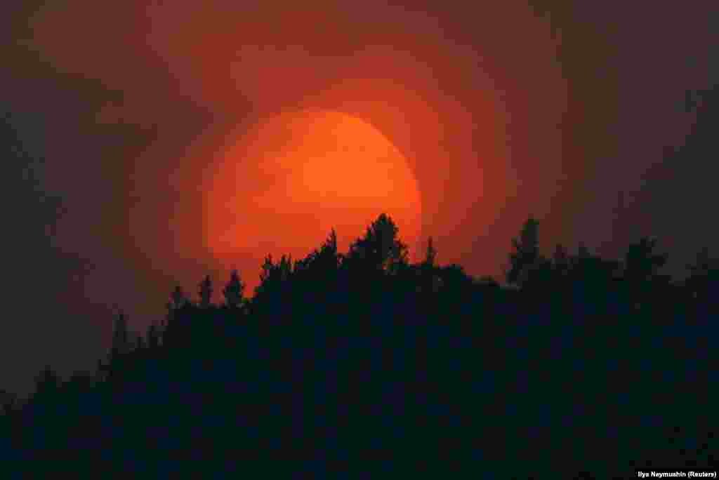On July 23, near the city of Krasnoyarsk, the sun set behind a forest shrouded in smoke from the wildfires. The Russian authorities are at odds with Greenpeace over the scale of the current fires.