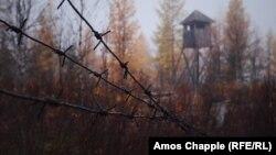 Росія. Залишки сталінської «дороги смерті» між Салехардом і Надимом, де були трудові табори ГУЛАГу