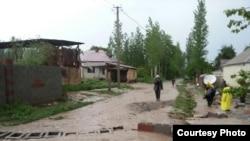 Сокулукский район Чуйской области. 19 мая 2015 года.