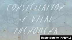 "Iамеркан Цхьаьнатоьхна Штаташ --Марра Эндрюн ""Дахаран хиламийн кочар"" (""A Constellation of Vital Phenomena"") жайнин мужалт"