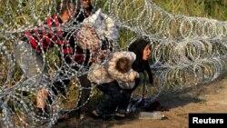 Венгрия-Сербия чегарасидан ўтиб келаётган суриялик муҳожирлар.