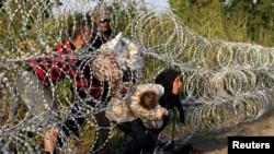 Сирийские мигранты пересекают сербско-венгерскую границу, август 2015 года.
