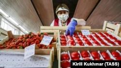 Россияга экспорт қилинган мева-сабзавотларнинг 19,3 фоизини помидор ташкил қилади.