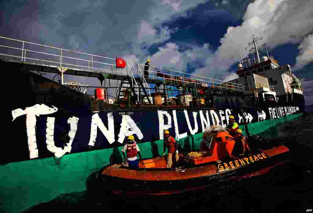 Акция Гринпис против промысла голубого тунца в нейтральных водах Тихого океана