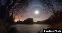 Месячнае гало над зімовым лясным возерам. 26.02.2015