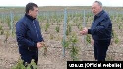 Президент Узбекистана Шавкат Мирзияев (слева) во время встречи с президентом Казахстана Нурсултаном Назарбаевым. Южно-Казахстанская область, 29 апреля 2017 года