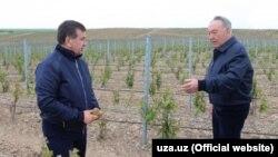 Президент Узбекистана Шавкат Мирзияев (слева) во время встречи с президентом Казахстана Нурсултаном Назарбаевым. Южно-Казахстанская область, 29 апреля 2017 года.
