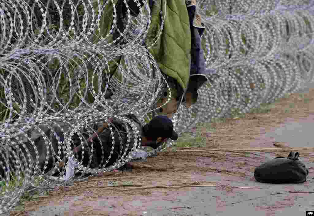 A migrant man creeps under a metal fence near the village of Roszke at the Hungarian-Serbian border. (AFP/Csaba Segesvari)