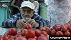 Грузинские фермеры все еще не верят, что с сегодняшнего дня выращенные ими персики, абрикосы и огурцы с помидорами могут попасть на российский рынок