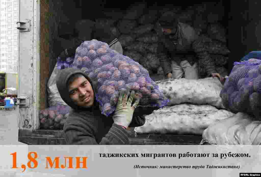 По данным министерстватруда, миграции и занятости населения Таджикистана, из 2,2 миллиона трудоспособного населениястраны1,8 миллиона работают за границей, большинство – в России.
