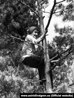 Astrid Lindgren 70 yaşlarında ağaca dırmaşaraq nə qədər azad ruhlu olduğunu nümayiş etdirir.
