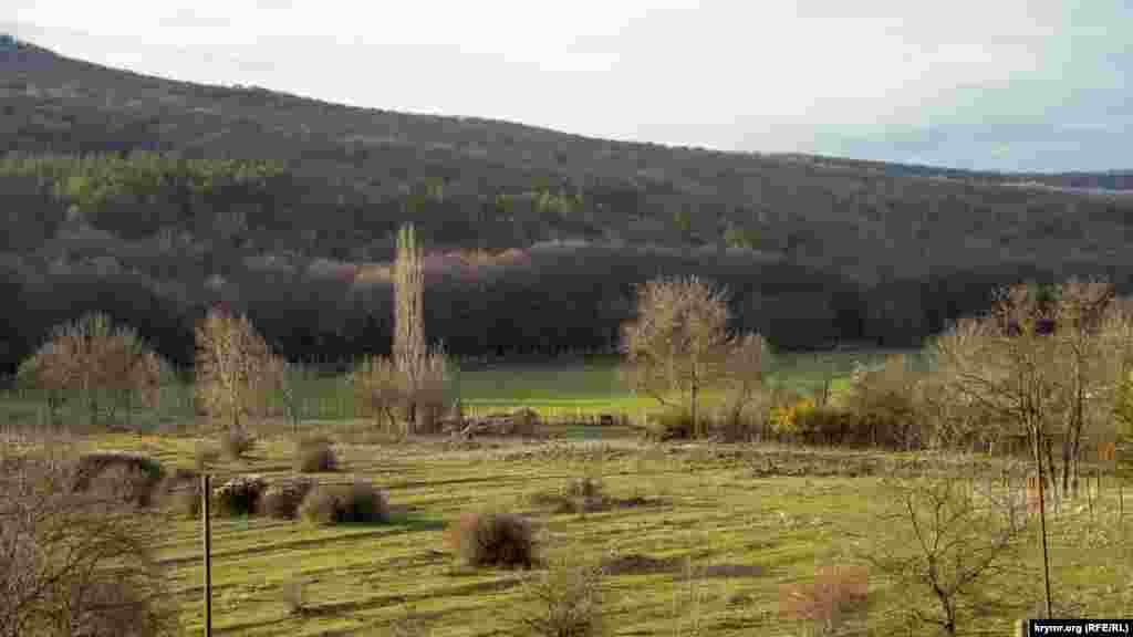 Залитая декабрьским солнцем Качинская долина у села Синапное Бахчисарайского района