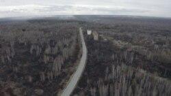 Пожары в Чернобыльской зоне – трава все еще тлеет. Видео с места событий (видео)