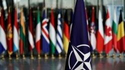 Aliații europeni vor ca președintele Trump să renunțe la planul retragerii trupelor americane din Germania