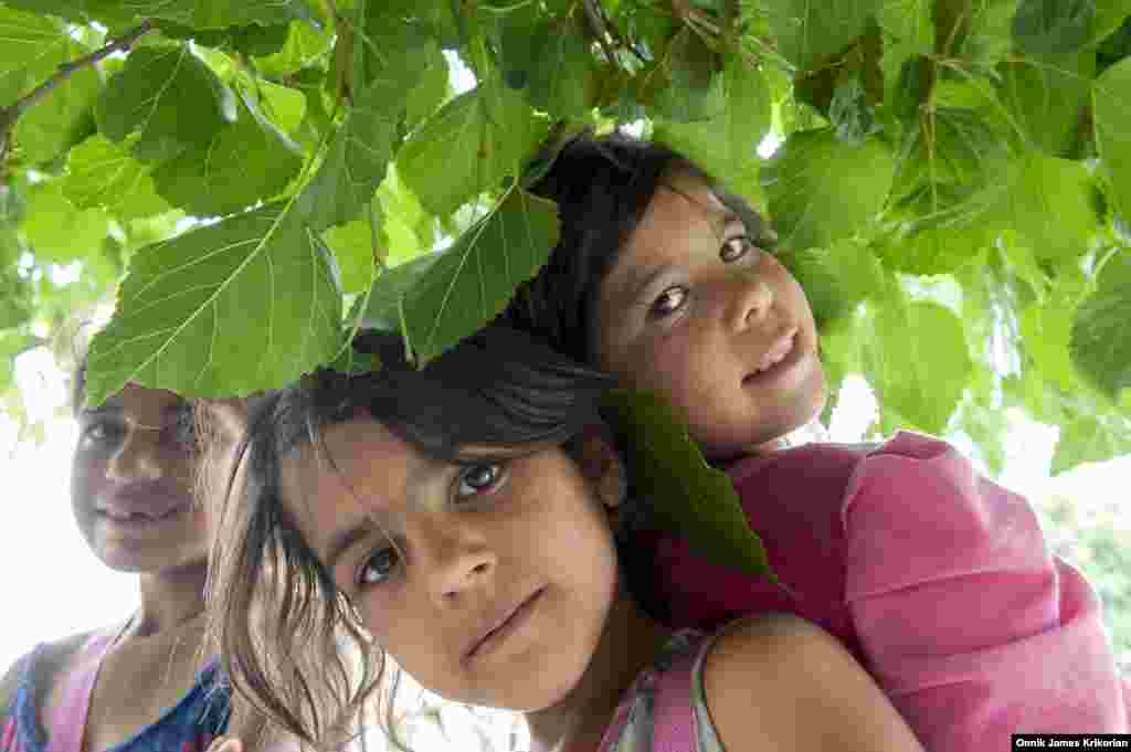 На фото – етнічний курди із Азербайджану на площі Революції Рози у Тбілісі. У момент зйомки там проходив пивний фестиваль. Для багатьох дітей подібні акції – спосіб «заробити» більше, ніж зазвичай. Охоронці намагаються проганяти жебраків, але це виходить не завжди