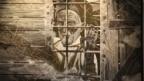 """""""История депортации вайнахов – это и история Германии"""""""