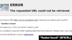The Ozodagon website was inaccessible on November 5, one day before the country's presidential election.