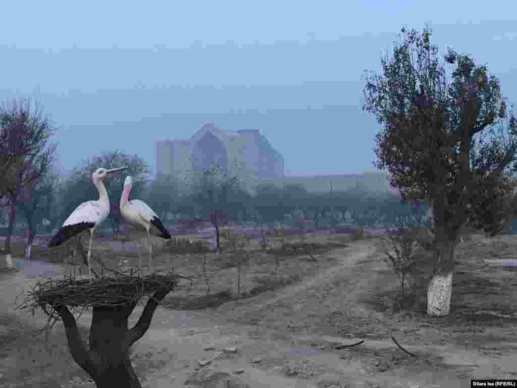 В июне 2018 года тогдашний президент Казахстана Нурсултан Назарбаев издал указ о переименовании Южно-Казахстанской области в Туркестанскую и переносе областного центра из Шымкента в Туркестан. Шымкент стал третьим (после Алматы и столицы) городом республиканского значения. Власти обещают в течение нескольких лет полностью газифицировать Туркестан.