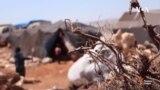 Коронавирус ба урдӯгоҳҳои паноҳандагони Сурия расид