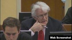 Radovan Karadžić u haškoj sudnici, 27. studeni 2012.