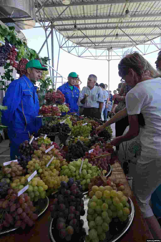 Qırımdaki şarap ve yüzüm festivali, 2015 senesi avgust 22 künü
