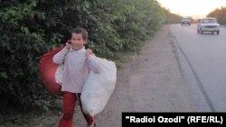 Мальчик несет мешки с хлопком. 18 сентября 2013 года.
