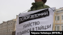 В Петербурге акция против убийства дельфинов, 13 февраля, 2015