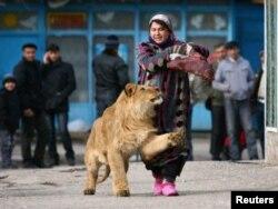 Боғи ҳайвоноти Душанбе