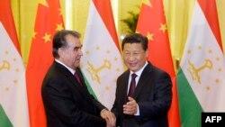 Presidenti i Taxhikistanit, Emomali Rahmon gjatë takimit me homologun e tij kinez, Xi Jinping, në Beijing, më 7 nëntor.