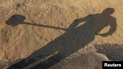 Қырманда жүрген адамның көлеңкесі. (Көрнекі сурет)